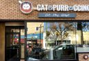 Cat cafe opening in Huntington Village