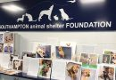 Long Island animal shelters get grants for renovations