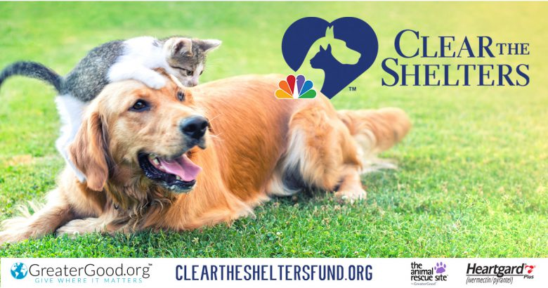 Annual Clear The Shelters campaign begins