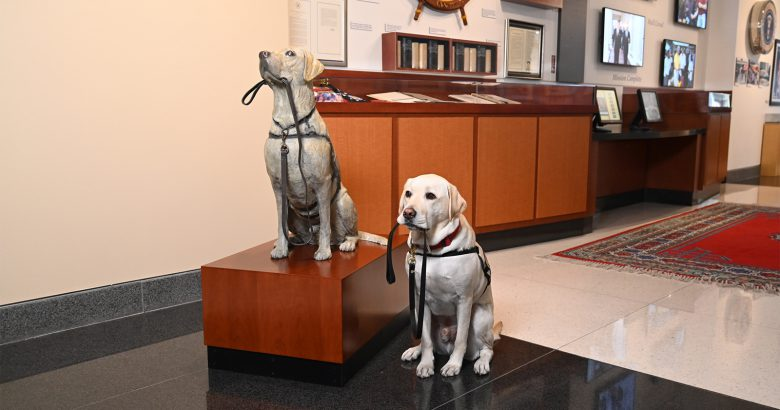 Presidential service dog Sully honored with statue