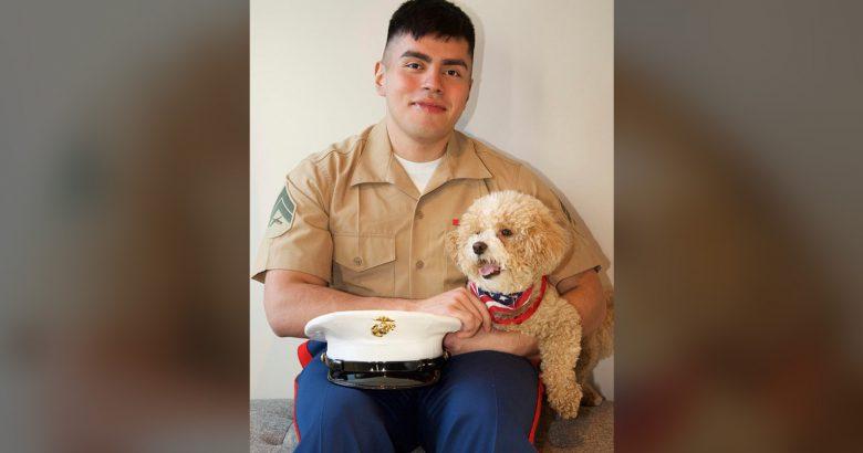 Little Shelter revives Pets for Vets program